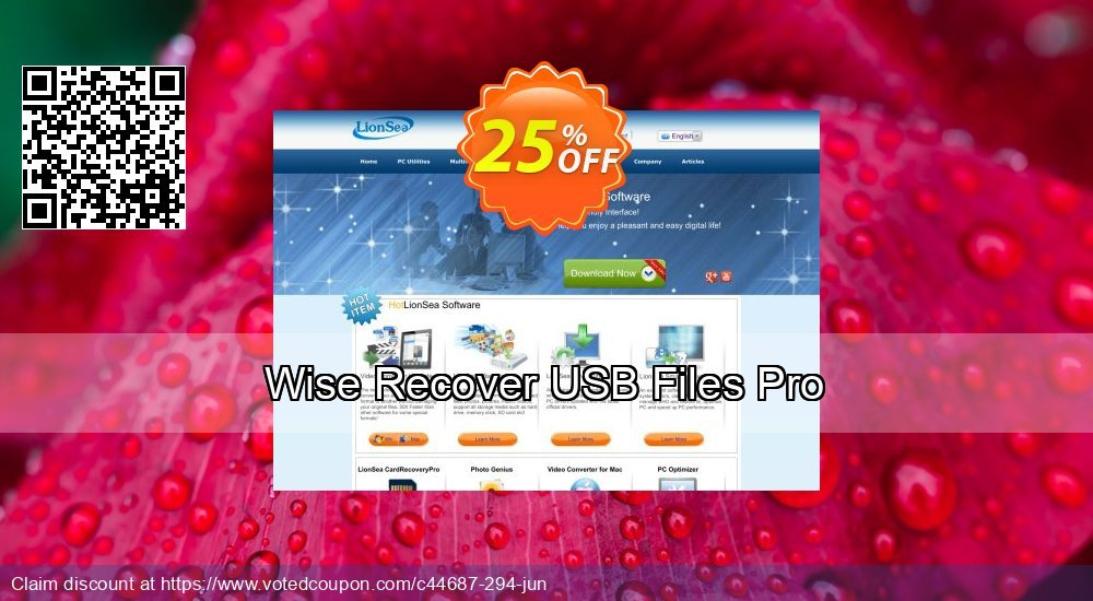 Get 26% OFF Wise Recover USB Files Pro Coupon