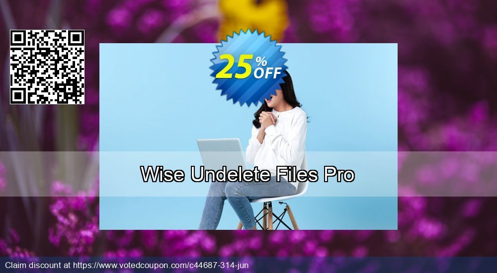 Get 25% OFF Wise Undelete Files Pro offer